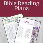 June Bible Reading Plan mockup
